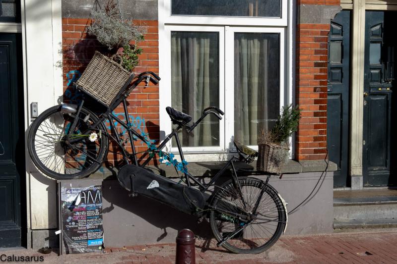 Jardin vélo amsterdam