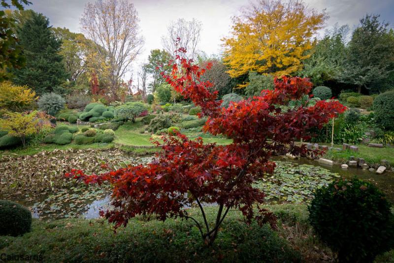 Paysage Jardin Drome 26 Beaumont-Monteux