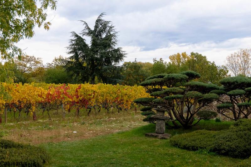 Paysage Drome 26 Beaumont-Monteux