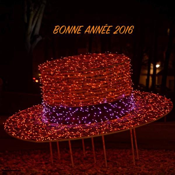 VOEUX VILLE TAIN-L'HERMITAGE 26 DROME