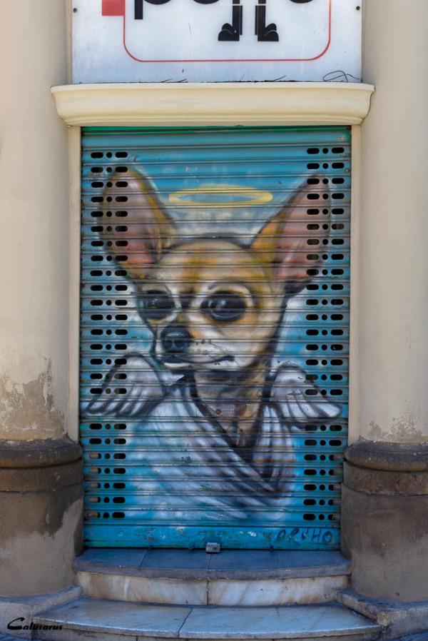 Rue graffiti chien Barcelone