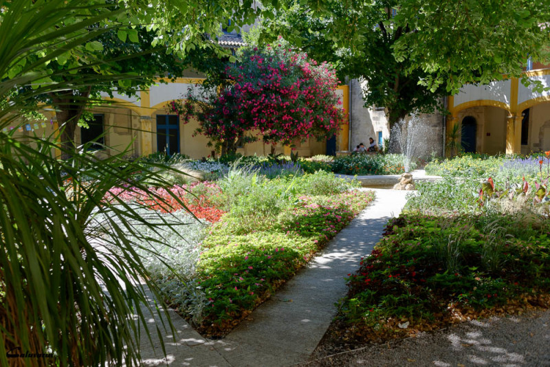 Jardin Arles Fleur fontaine
