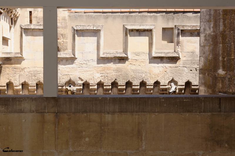 Architecture détail Avignon