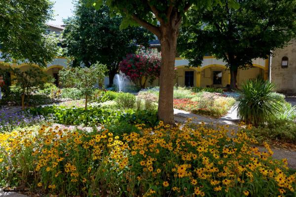 Jardin fleur Arles