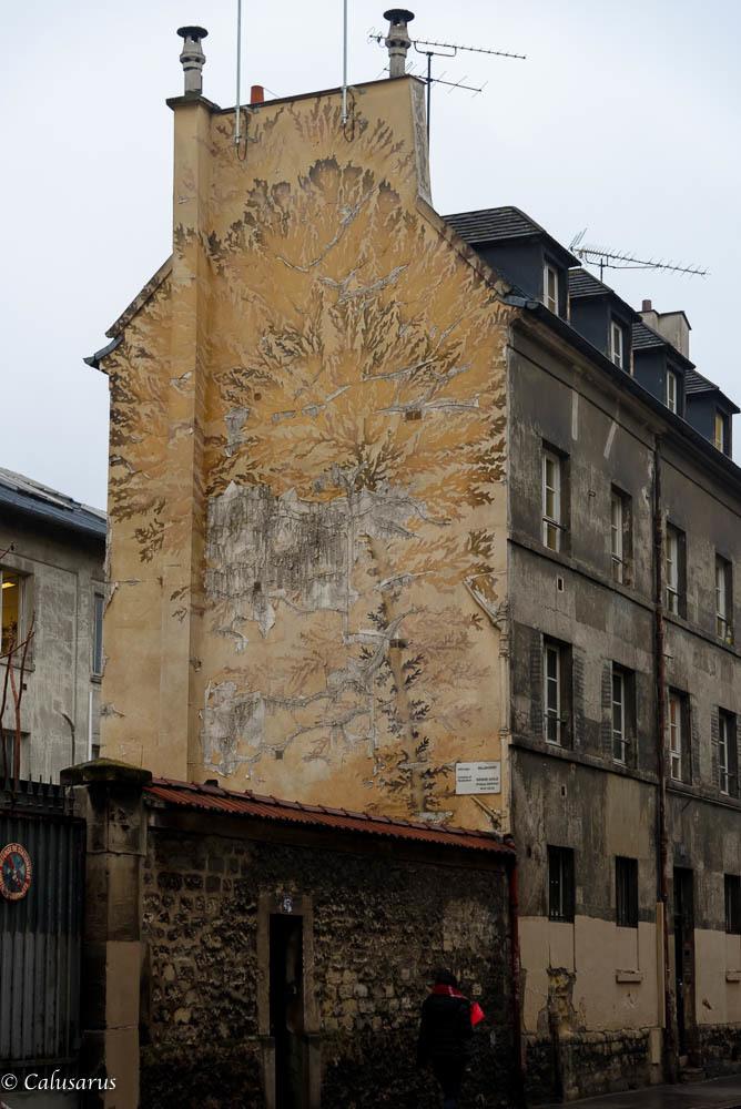 Architecture Paris Plante
