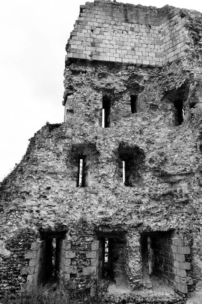 Paysage Eure N&B Ruine