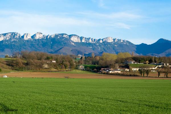 Paysage Drome 26 Pizancon Montagne