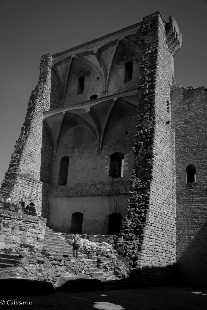 Architecture N&B Chateau ruine Vaucluse