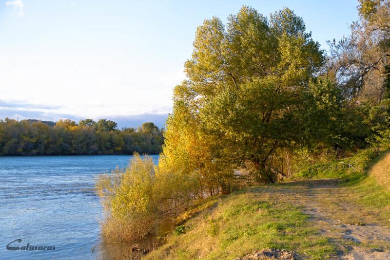 Automne Rhône RIVIERE TARASCON