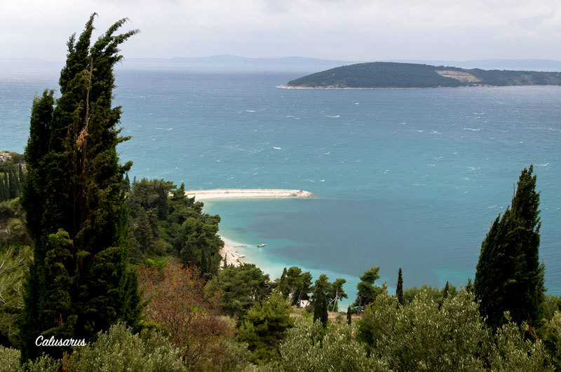 Paysage Mer Croatie Arbre