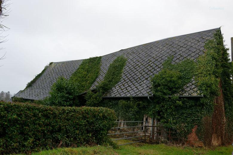 Paysage Maison Normandie Eure