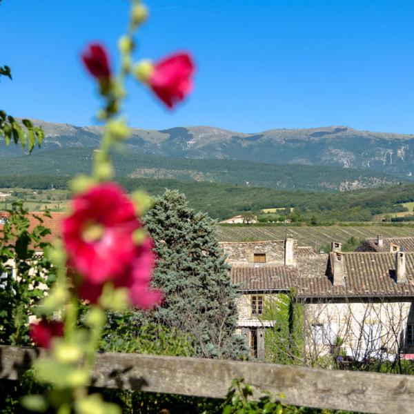 Drome 26 Bourdeaux Paysage Fleur Montagne