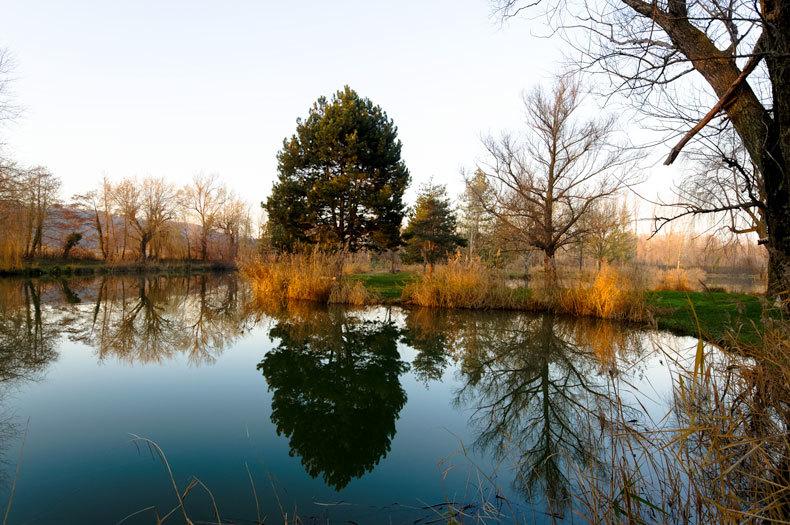 Paysage Nature Arbres Reflet Drome 26 Romans
