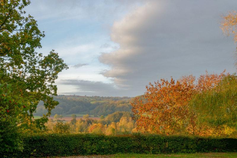 Paysage Normandie Automne Nature Arbres