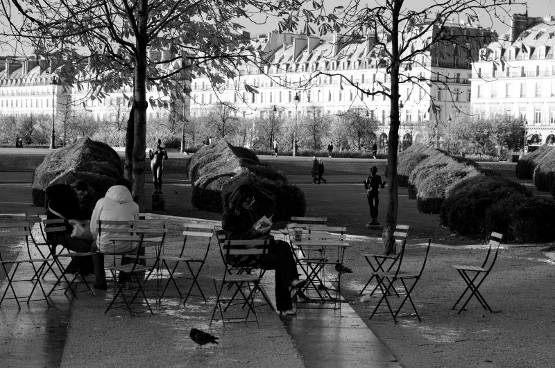 Paris Jardin N&B Silhouette Beaux-arts