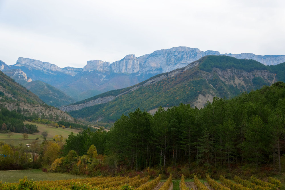 Paysage Nature Montagne Drome 26 Agriculture
