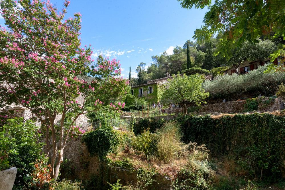 Jardin Arbres Fleurs paysage