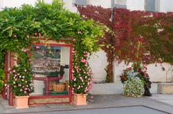 Paysage Fleurs Ville Drome 26 Larnage