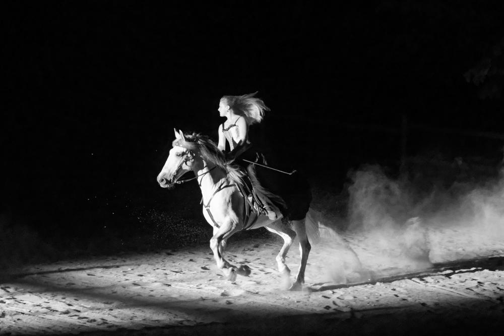 Drome 26 Beauregard Baret N&B Cheval silhouette
