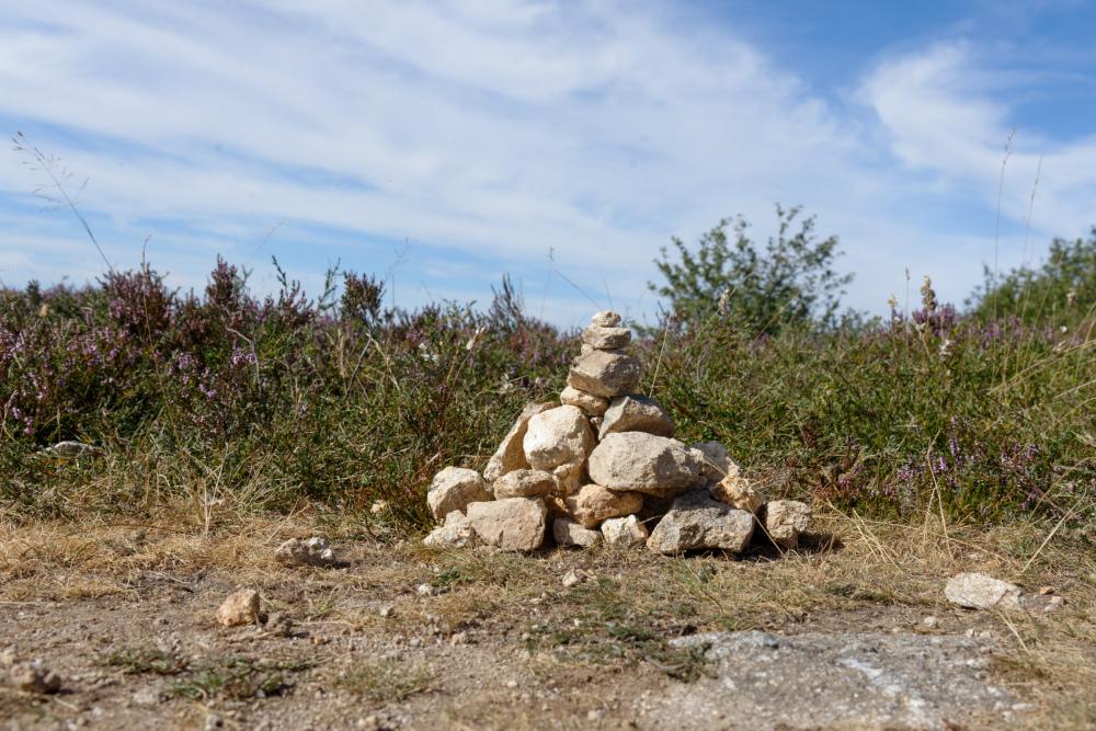 Art Nature Montagne Lacaune