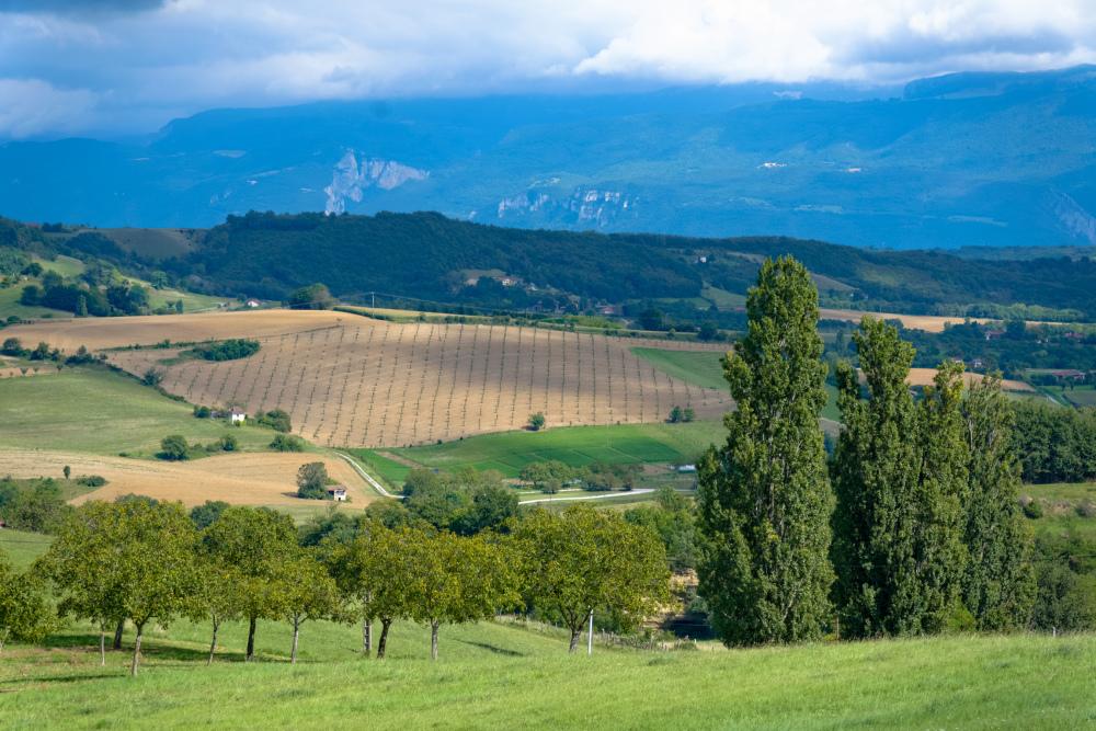 Drome 26 Paysage landscape St-Bonnet-De-Valclérieu