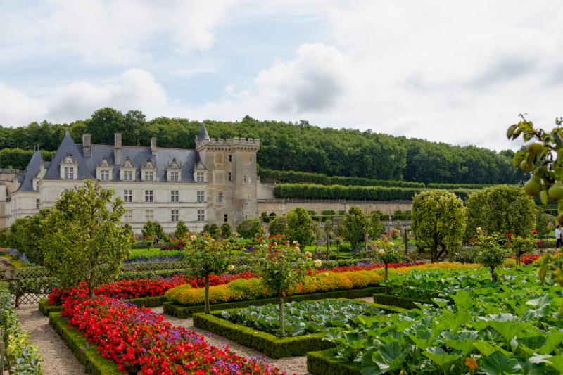 Jardin Garden Fleurs Flowers Villandry Chateau
