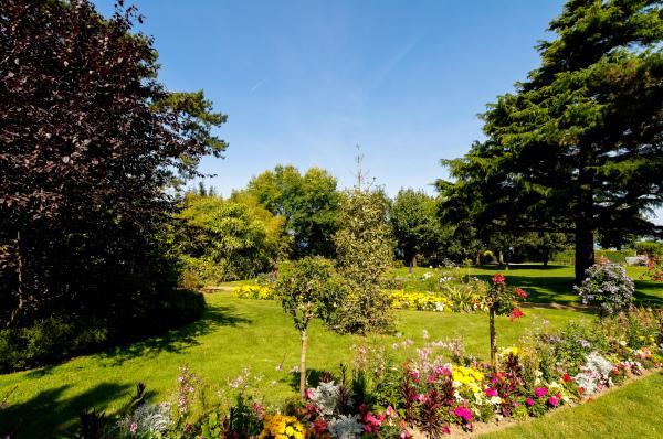 Fleur Jardin Nature Manche Granville