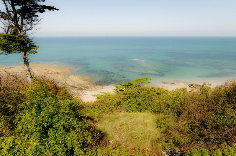 Paysage Landscape Mer Sea Nature Granville Manche
