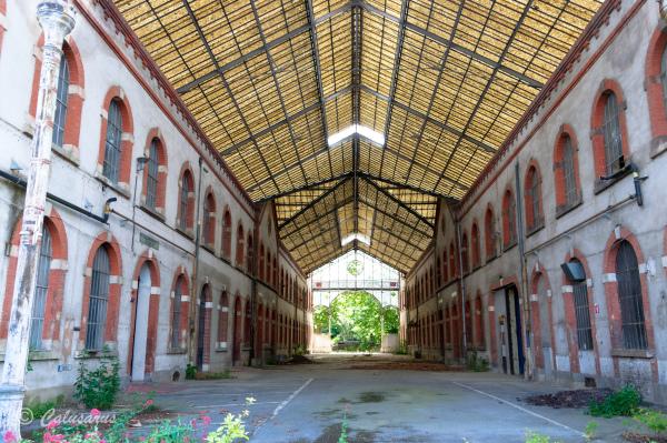Architecture Musée Isere