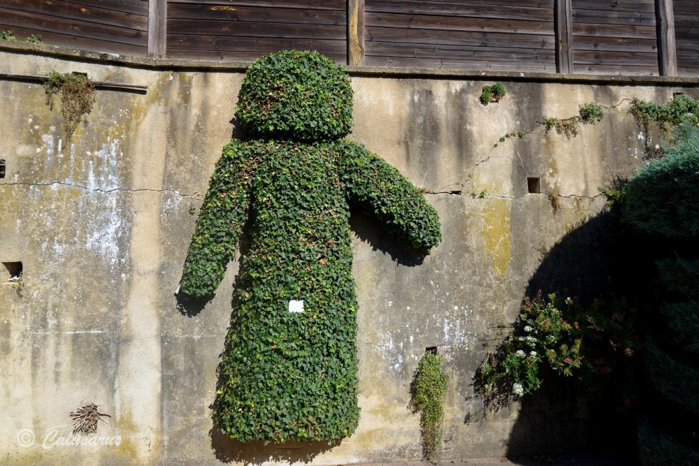 Drome 26 Hauterives topiaire topiary