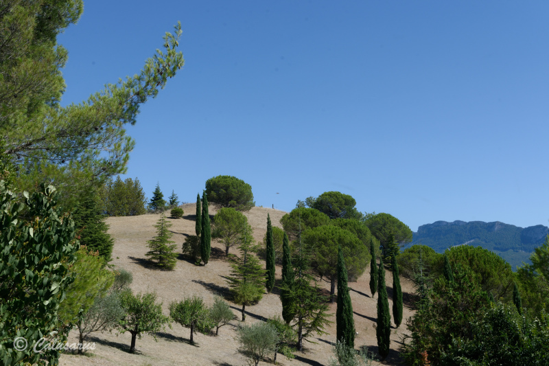 Drome 26 Paysage Mirabel Landscape