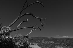 Drome 26 Paysage Mirabel Landscape N&B B&W