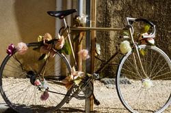Drome 26 Vélo Fleurs Art