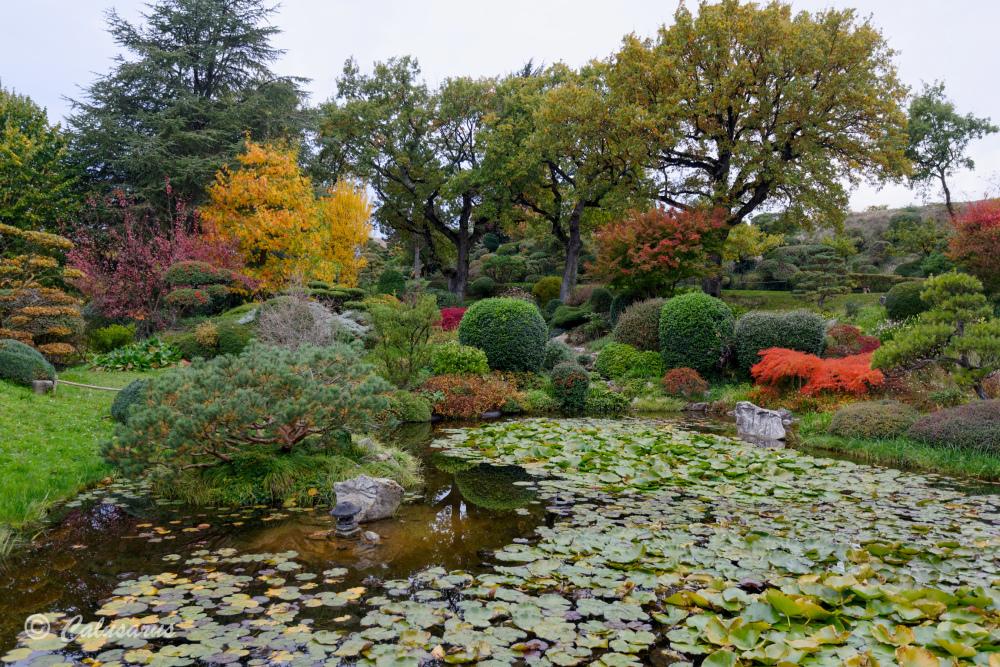Drome 26 Jardin Beaumont-Monteux Automne