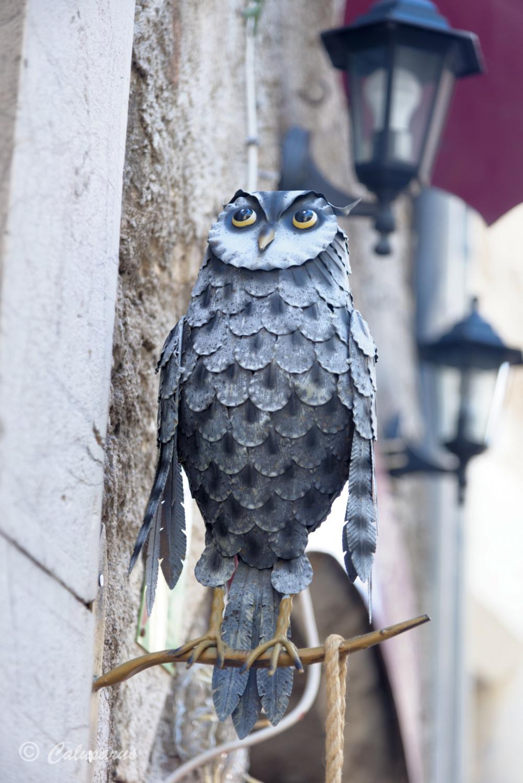 Enseigne beaux-arts Saint-ghuilhem oiseau