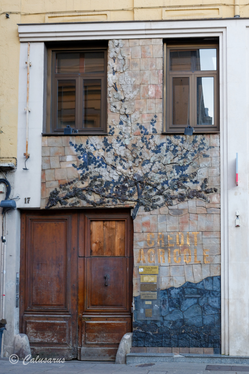 Architecture Porte Nature Arbre