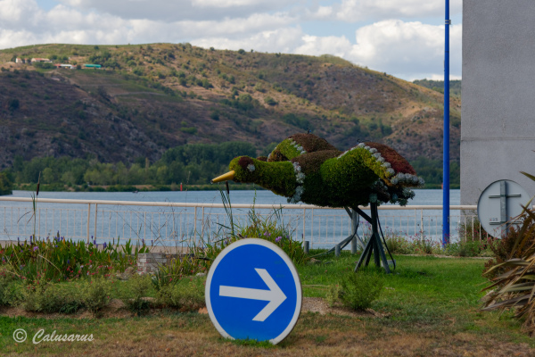 Drome 26 Saint-Vallier Topiaire animal oiseau
