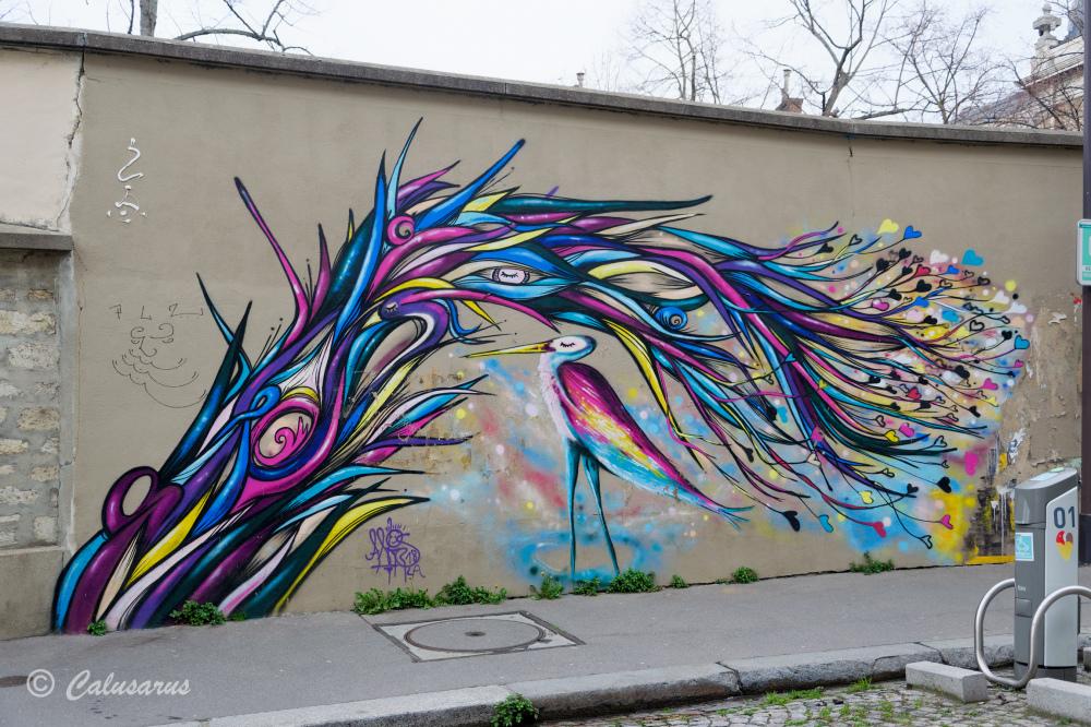Paris graffiti oiseaux couleurs