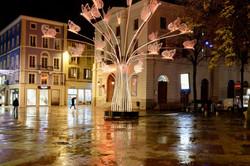 Valence Drome 26 Nuit Noel Arbre reflet