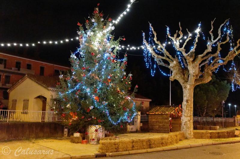 Drome 26 Chatuzange Nuit Noel Arbre