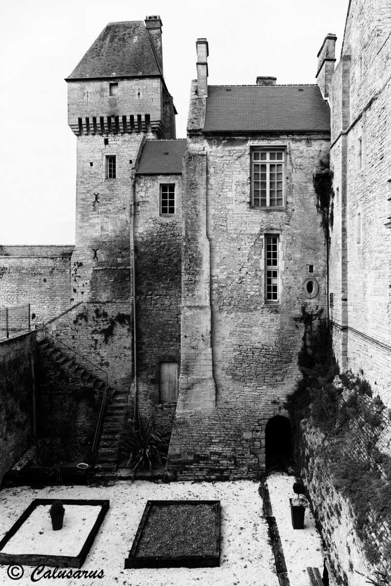 Chateau Architecture Calvados N&B