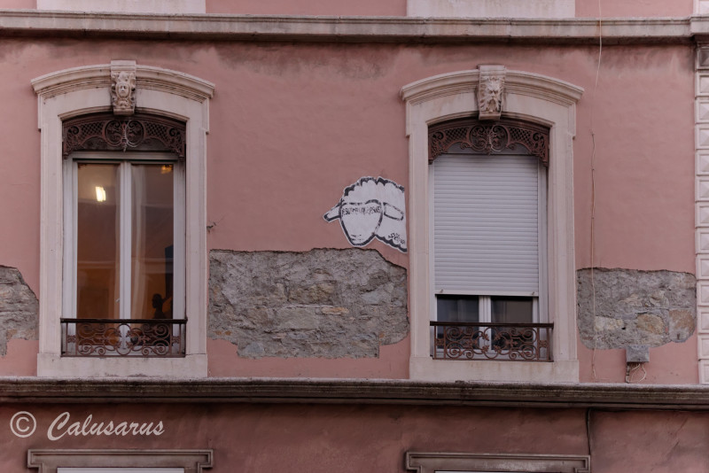 Grenoble Isère Graffiti Mouton fenetre