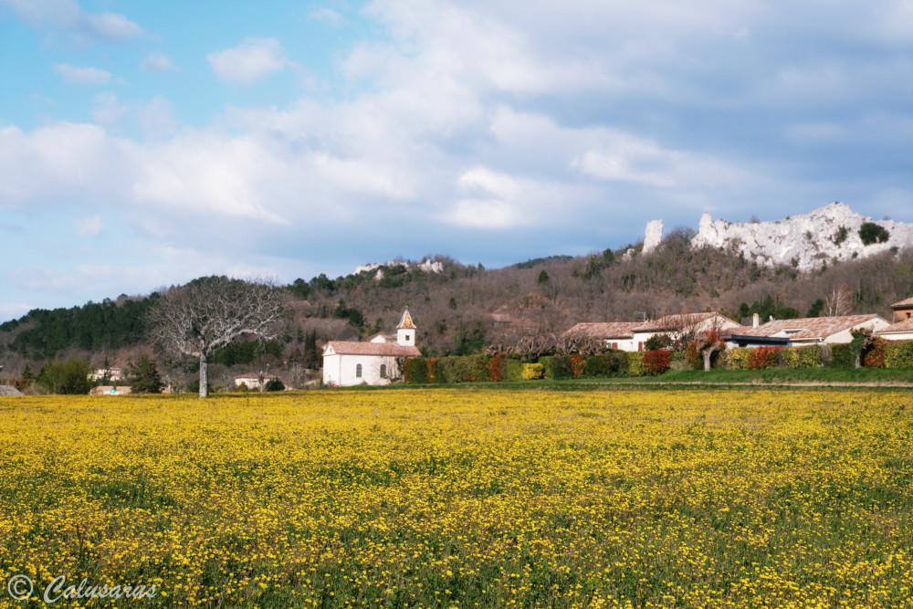 Drome 26 Paysage Montagne La Baume Cornillane fleu