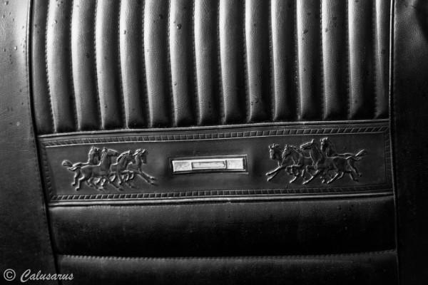 Drome 26 Chanos Curson Automobile Mustang Details