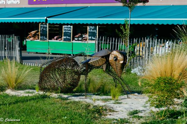drome 26 Montelier Art Animal