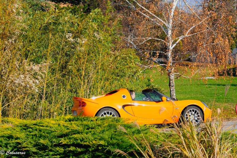 Drome 26 Chatuzange Goubet Automobile Lotus