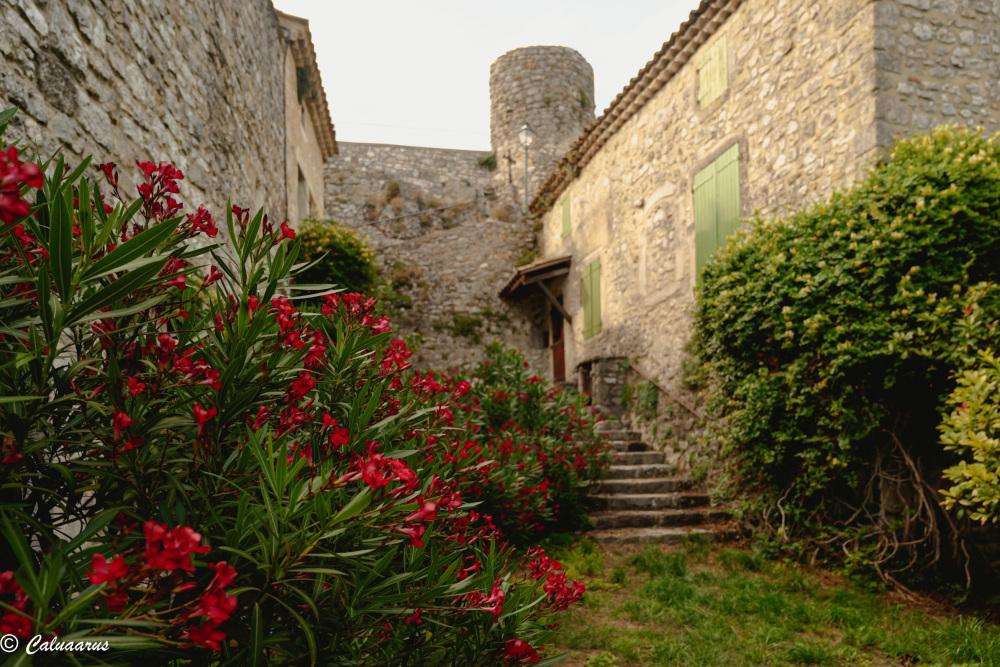 Drome 26 Roche Sur Grane Paysage architecture Fleu