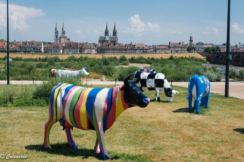Moulins Paysage Landscape Art Vaches Cows