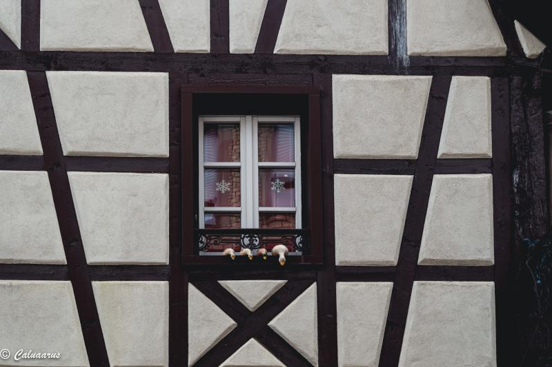 Architecture colombage fenêtre Canard