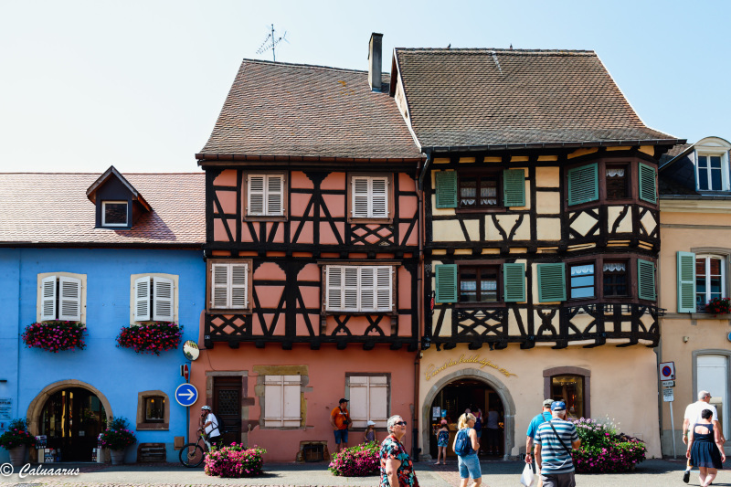 Architecture Alsace Eguisheim Colombages